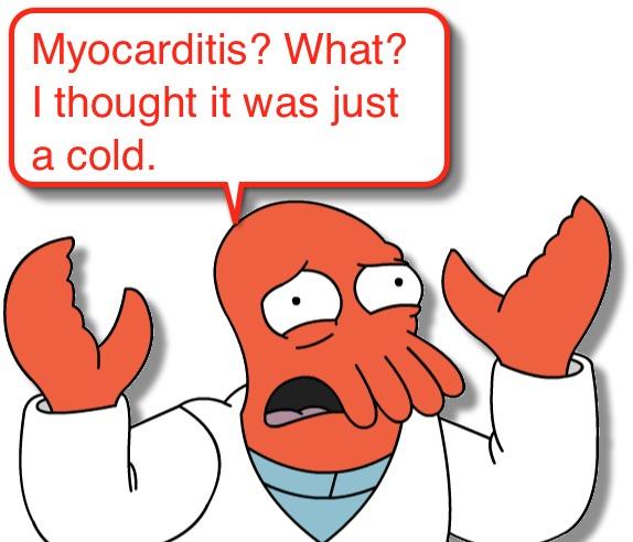 Image result for myocarditis