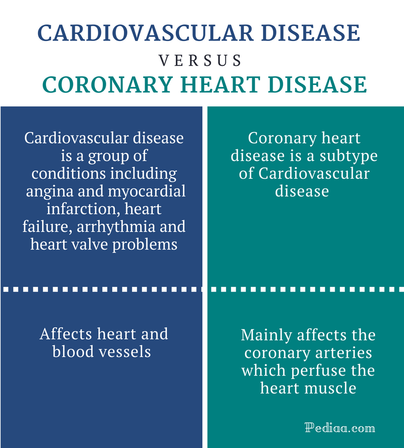 Difference Between Cardiovascular Disease and Coronary ...