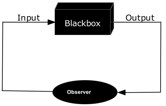 What is the Difference Between Blackbox and Whitebox