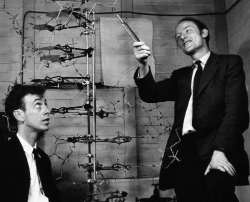 Watson And Crick Nobel Prize