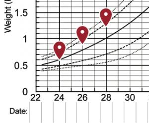 Fenton Preterm Growth Charts