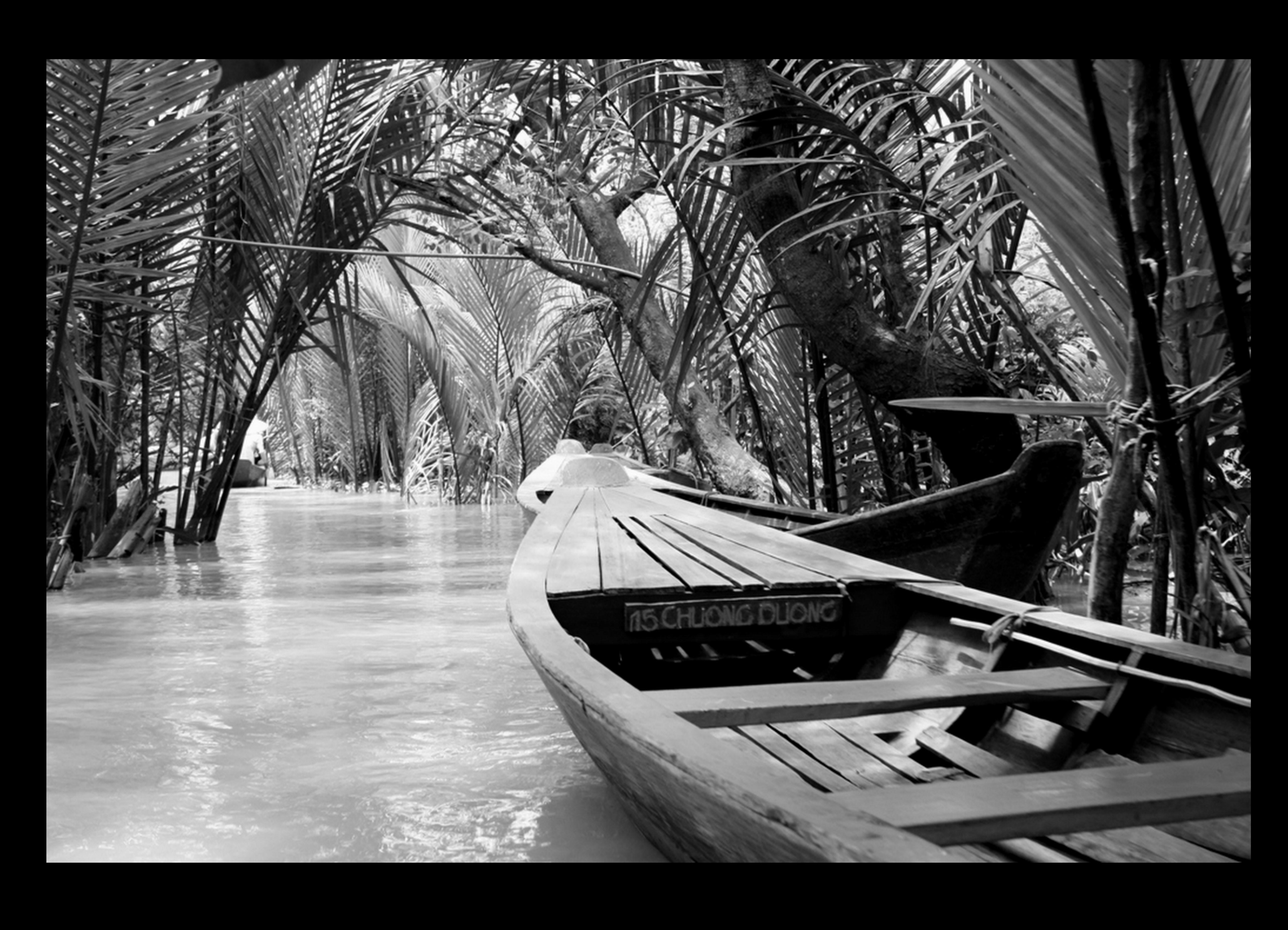 Vietname_Julho 2009