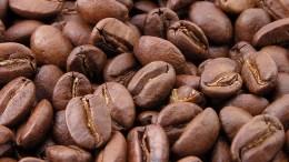Ejecutivo evalúa traer 200 mil quintales de café para abastecer el mercado - Ejecutivo evalúa traer 200 mil quintales de café para abastecer el mercado