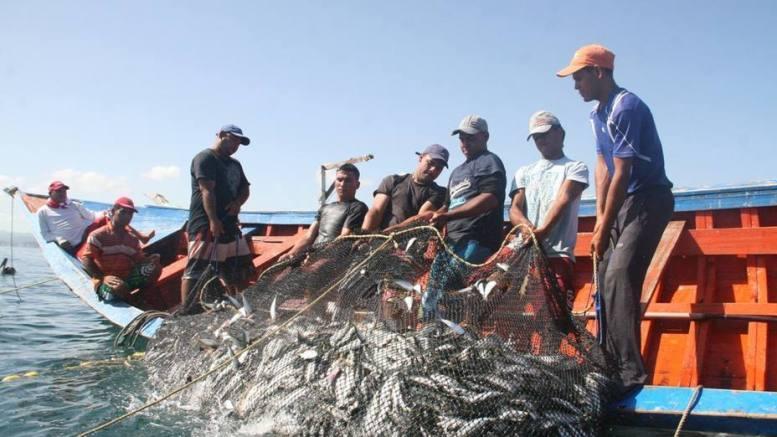 Producción pesquera y acuícola alcanzó más de 50 mil kilos - Producción pesquera y acuícola alcanzó más de 50 millones kilos