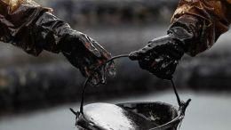 Se desploma precio del oro negro - Se desploma precio del oro negro