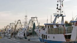 La gran preocupación de los pescadores japoneses - La gran preocupación de los pescadores japoneses