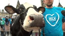 """El contundente rechazo de los """"lecheros"""" canadienses al TLCAN - El contundente rechazo de los """"lecheros"""" canadienses al TLCAN"""