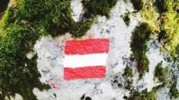 Histórico Austria emite bonos de deuda a 100 años - ¡Histórico!  Austria emite bonos de deuda a 100 años