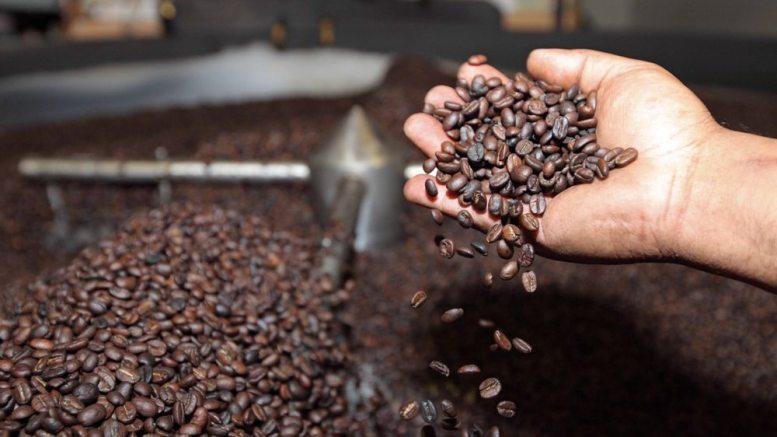 43 empresas torrefactoras de café han sido certificadas - 43 empresas torrefactoras de café han sido certificadas
