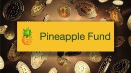Wao Un bitcoiner anónimo crea un Fondo Pineapple de USD 100 millones - ¡Wao! Un bitcoiner anónimo crea un Fondo Pineapple de USD 100 millones
