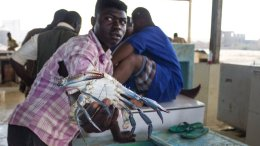 Sudaneses se la ven negra con aumento de precios y devaluación de la moneda - Sudaneses se la ven negra con aumento de precios y devaluación de la moneda