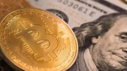 Bitcoin desplazará al dólar y se convertirá en la moneda mundial - Bitcoin desplazará al dólar y se convertirá en la moneda mundial