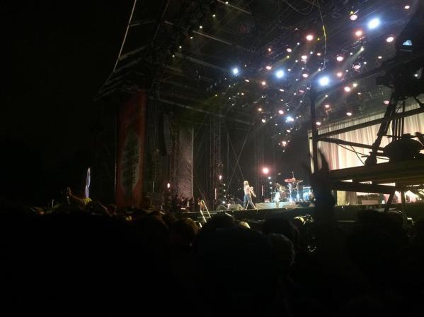 Concert de Iggy Pop.