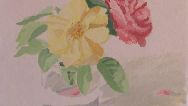 """""""Rosa y rosa amarilla"""""""