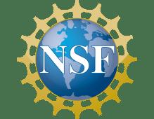 nsf_1.png