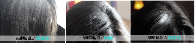shampoings-sec-13