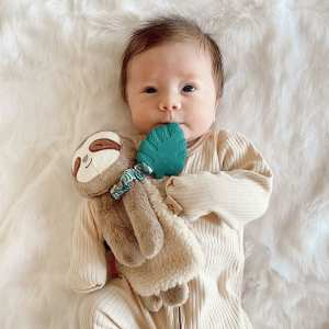 Itzy Ritzy Lovey Sloth Plush with silicone teether toy