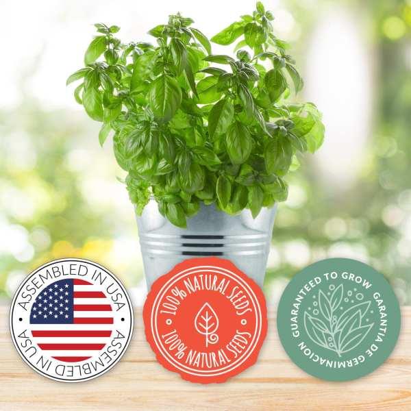 Chef Grow Kit | Basil | Organic