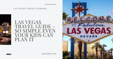 LAS VEGAS TRAVEL GUIDE - So Simple Even Your Kids Can Plan It