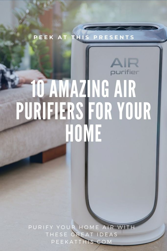 10 Amazing Air Purifiers For Your Home