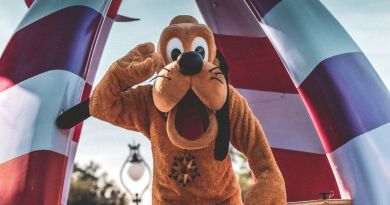 15 Memorable Good Neighbor Hotels Near Disneyland
