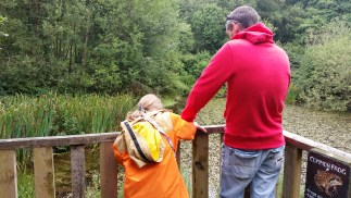Looking for frogs on the Nature Walk