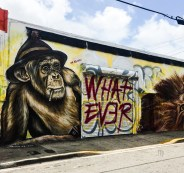 Wynwood Miami 2017 whatever