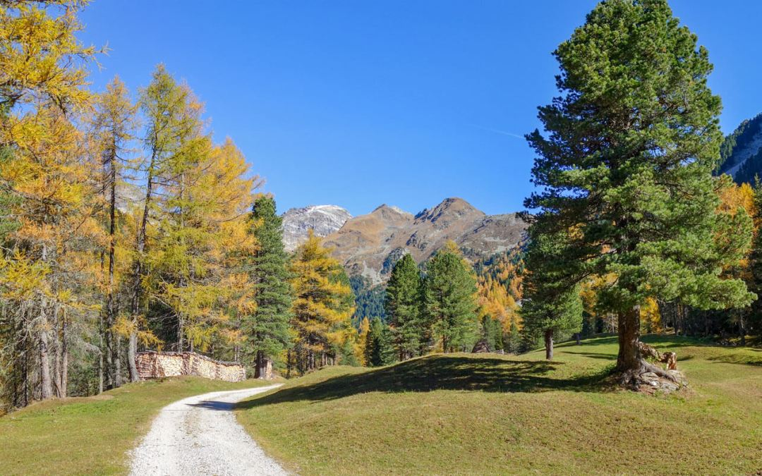7 Herbst-Wandertipps in denSüdalpen