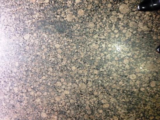 Floor Restoration (29)