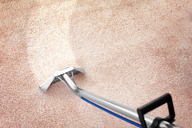 Peerless Carpet Cleaning
