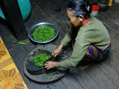 Salad from the garden (Palaung tribe's village)