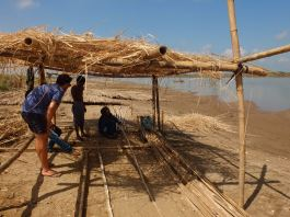 Working with the bamboo on the Mekong shore