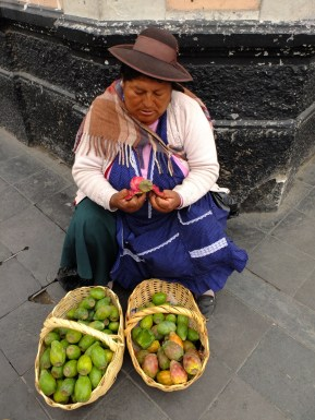 In Arequipa, a woman selling Tuna (the cactus fruit)