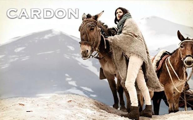 Cardon by Pato Battellini