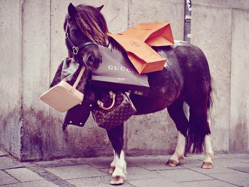 Fashion Jobs Saumur