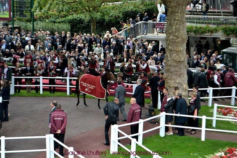 www.pegasebuzz.com   Qatar Prix de l'Arc de Triomphe 2014 - hippodrome Paris Longchamp