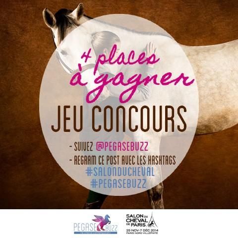 www.pegasebuzz.com | Salon du Cheval 2014