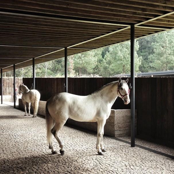 www.pegasebuzz.com   Equestrian Centre in Valle de Bravo Mexico by CC Arquitectos