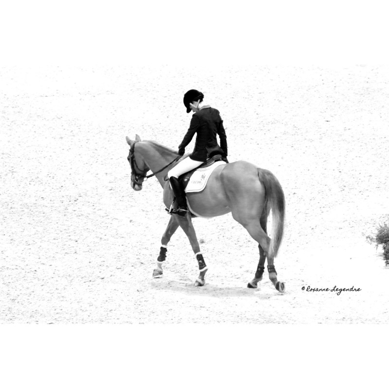 www.pegasebuzz.com | Jumping International de Bordeaux, Luciana Diniz - Photographe : Roxanne Legendre