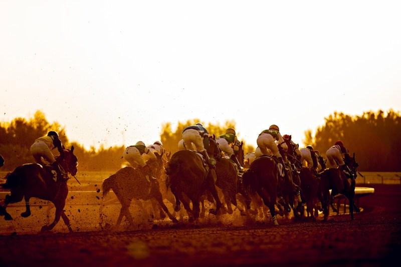 www.pegasebuzz.com | Riyadh Horse Racing by Kristoffer Perlada