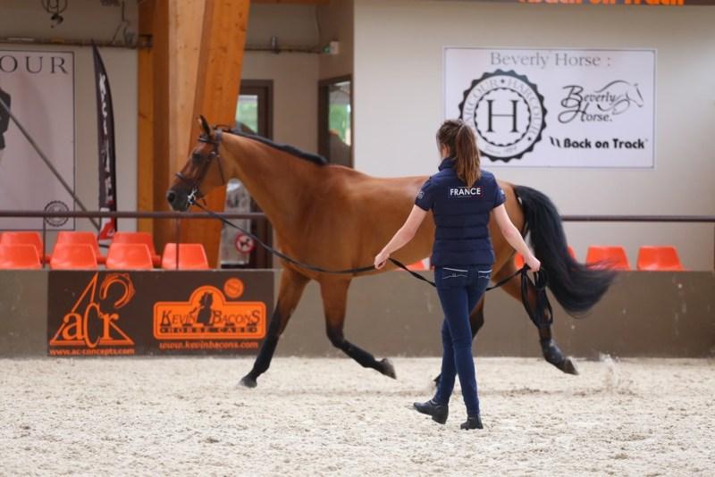 www.pegasebuzz.com | Harcour, fournisseur officiel de l'Equipe de France d'Equitation.