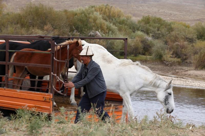 www.pegasebuzz.com | Cinéma : Centaure, le film.