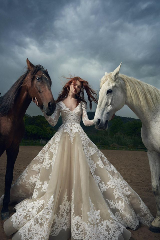www.pegasebuzz.com | Photography : Rabee Younes - Horse