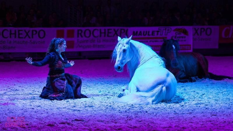 www.pegasebuzz.com | Salon du cheval Equid'Espaces 2018