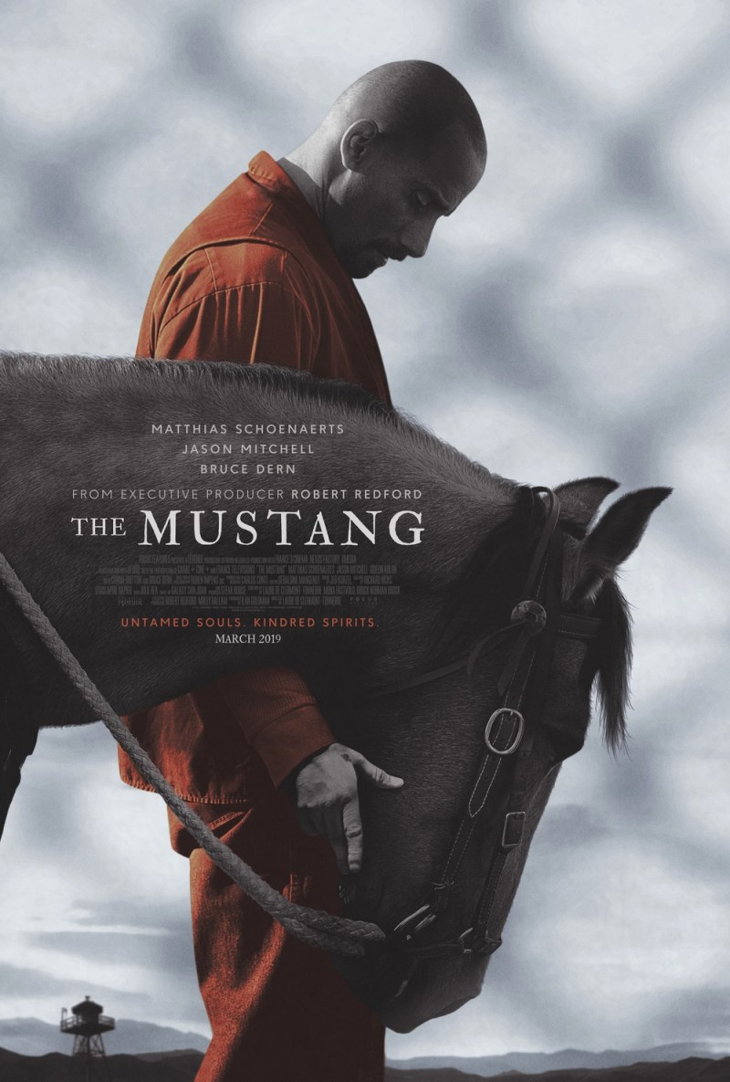 www.pegasebuzz.com   The Mustang, movie by Robert Redford.