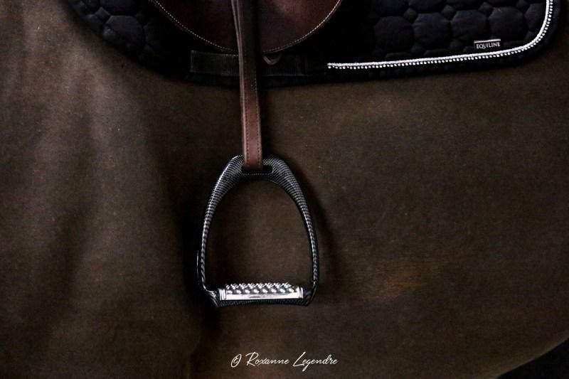 www.pegasebuzz.com | Equipement du cheval : étrier Carbon Royal Rider Stirrups.