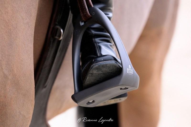www.pegasebuzz.com | Equipement du cheval : étrier T3 Royal Rider Stirrups.