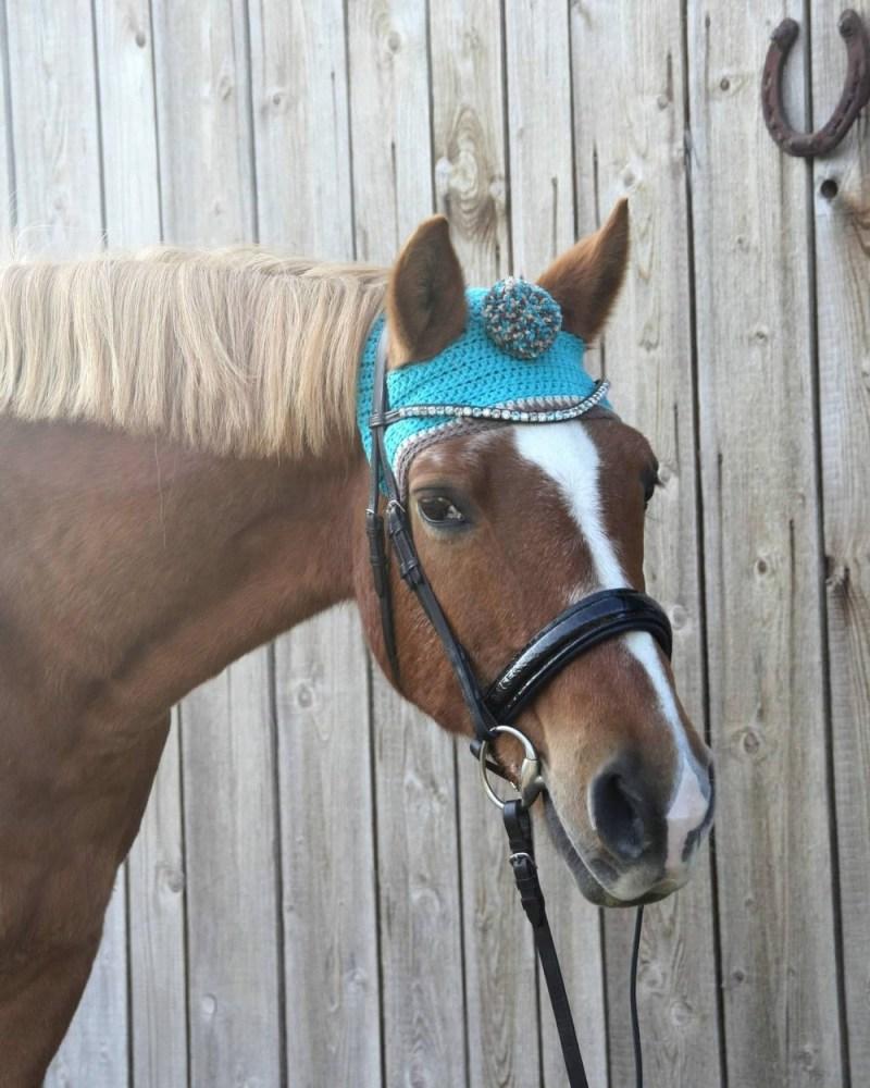 www.pegasebuzz.com | Pom pom toque for horses : Bemützt.