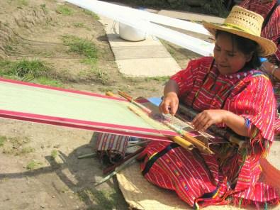10.9 weaver with greenish warp