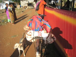 13.7 warps on bicycle with dog